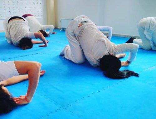 Yogaterapia Ayurveda Integral